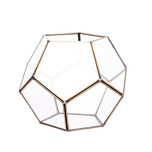 Linkool Stilvolles Glas-Terrarium, Premium-geometrische Deko-Formen für Pflanzen, geschlossen, Farbe Kupfer Schwarz und Gold, Wasserauslaufschutz