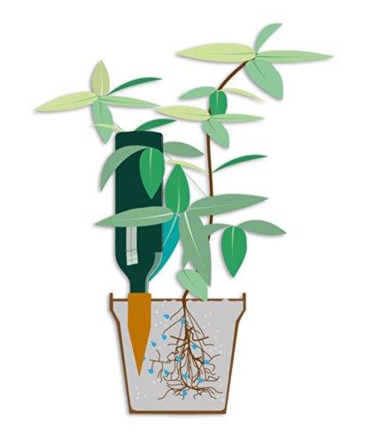 Tonkegel Bewässerung bio green bewässerung hydro wine tonkegel terracotta top