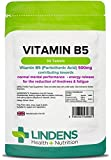 Lindens Compresse di vitamina B5 da 500 mg | 90 Confezione | 8000% di dose di VNR, regola le prestazioni cognitive, il corretto funzionamento del metabolismo e contribuisce alla riduzione del senso di stanchezza