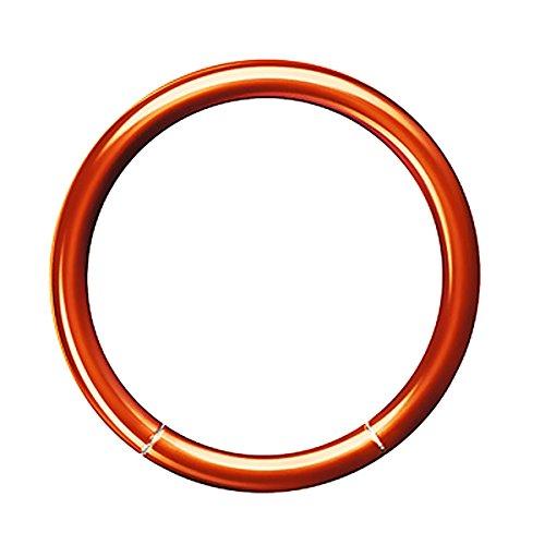 Piersando Universal Piercing Segmentring Smooth Septum für Tragus Helix Ohr Nase Lippe Brust Intim Scharnier Clicker Ring Chirurgenstahl 1,6 x 12mm Coffee (Braun Ring Septum)