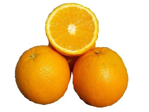 15 Kilo Saftorangen Orangen frisch + süß + saftig direkt vom Großmarkt immer neue Ernte
