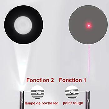 FYNIGO Jouet Chats Jouet interactif Chat Chien Fonction 2 en 1 Souris colorée à Plumes(2 Racines)