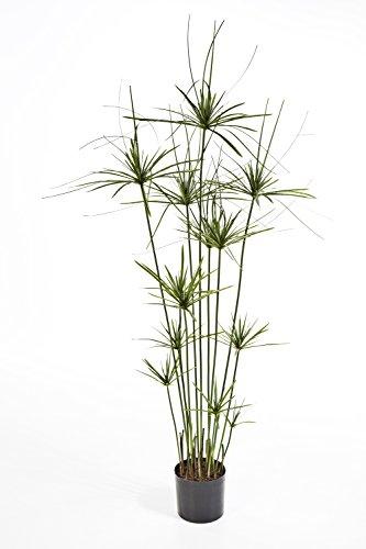 artplants - Künstliches Cyperus Gras RAMSES, 210 Blätter, grün, DELUXE, 140 cm - Deko Papyrus Staude / Kunst Papier Pflanze