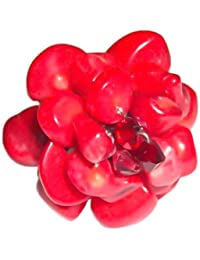 Chic-Net Korallenring versilberte Ring rot Blume Koralle (ca. 3-5cm Ø)- handgefertigt- verstellbar