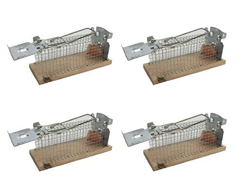 Preisvergleich Produktbild Mausefalle Tierfreundliche Lebendfalle für Mäuse 4 Stück Set