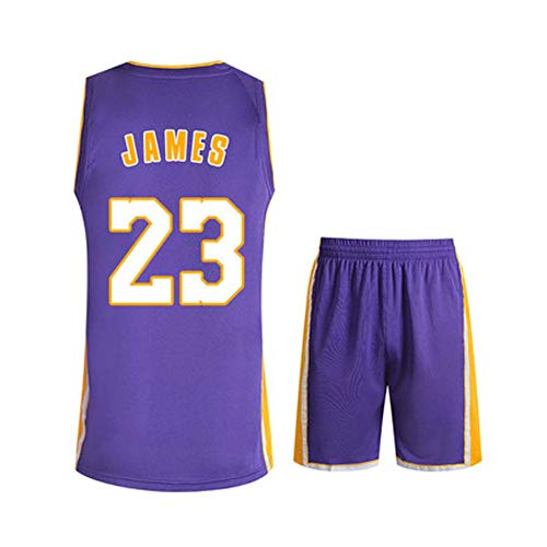 9cfb8803 Lebron James #23 Basketball Jersey M-XXXL, Los Angeles Lakers 90S Clothing  for