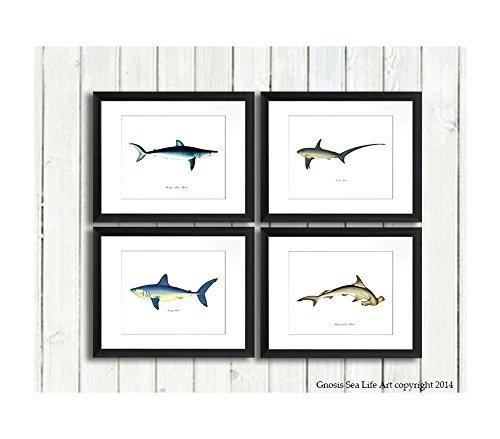 Sharks Wandtattoo Art Prints Set of 4Wall Art Nautisches gerahmt Decor -