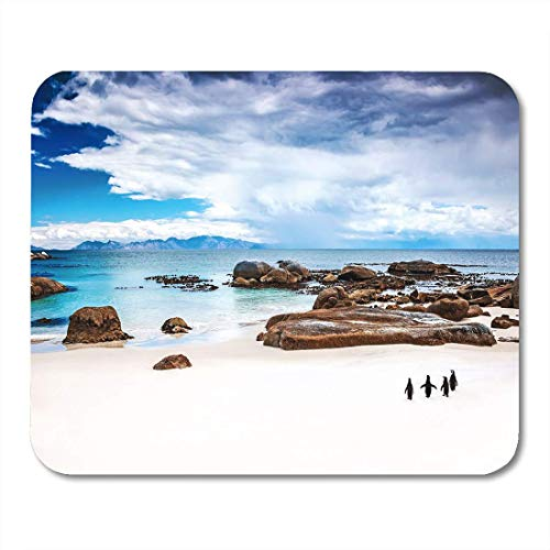 Deglogse Gaming-Mauspad-Matte, Wild South African Penguins Colony of Black Footed Walking Mouse Pad, Desktop Computers mats -