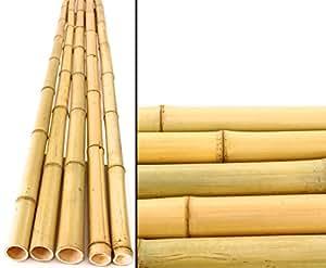 bambus bambusrohr gelb moso bambus gebleicht durch 4 5 6cm l nge 200cm amazon. Black Bedroom Furniture Sets. Home Design Ideas