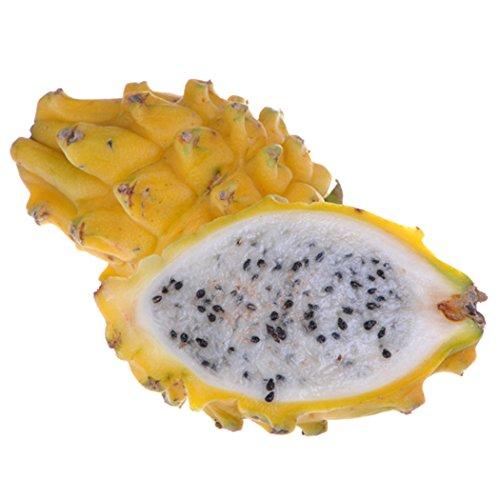 Ncient 30 pcs/Sac Graines Semences de Pitaya Fruits du Dragon Vivace Graines de Fruits Graines à Planter Plante Rare de Jardin Balcon Bonsaï en Plein Air pour l'Intérieur et l'Extérieur (Jaune)