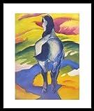 Franz Marc Blaues Pferd II Poster Kunstdruck Bild im Alu Rahmen in schwarz 58,5x48cm