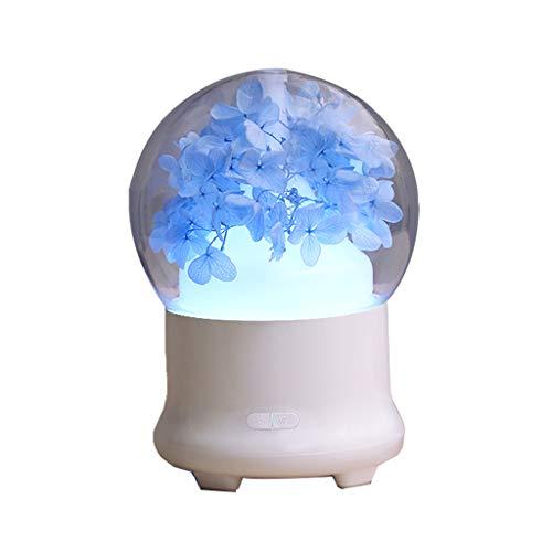 El humectador, pétalos azules silencia el humidificador casero de la oficina 120 * 120 * 168m m