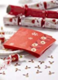 20 ROCKING RUDOLPH REINDEER 3 PLY CHRISTMAS PARTY PAPER NAPKINS