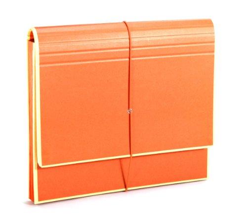 Semikolon (351988) Akkordeon mit Gummiverschluss orange (orange) | Sammelmappe/Fächer-Mappe für A4 und US Letter Size | Format: 32,0 x 27,5 cm