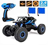 Best Fast Rc - RC Car ,CR 2.4Ghz 4WD High Speed Off-Road Review