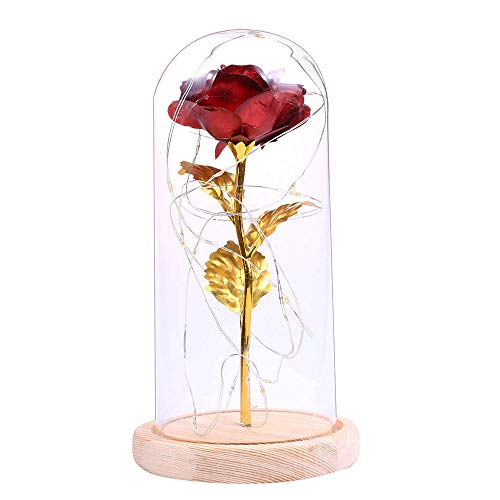 PATNICK Exquisite Geburtstagsgeschenk Goldfolie Rote Rose Blume Glas Flasche Basis Abdeckung Desktop Decor Led Licht Leuchtende Lampe (Glas Flasche Herzstück)