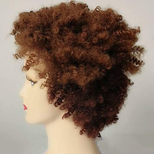 CPHGG Damen Braune Perücken Natürliche Hohe Qualität Kurze Lockige Haare Synthetische Flauschige Welle Perücken für Kostüm Party Alltag Echte Echthaar - Braunes Lockiges Haar Kostüm