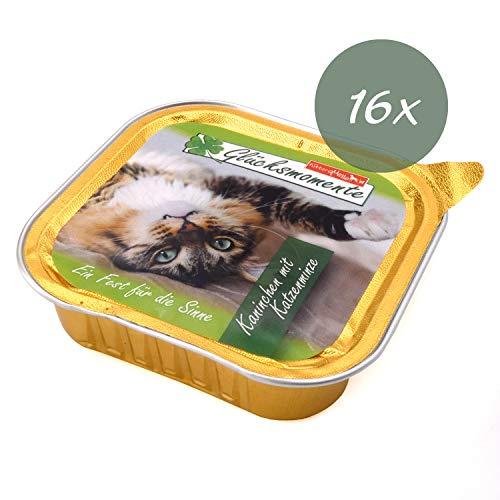 die futterquelle Katzenfutter Nass I 16 x 100g Nassfutter in verschiedenen Geschmacksrichtungen I...