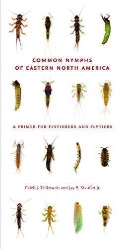 Common Nymphs of Eastern North America: A Primer for Flyfishers and Flytiers (Keystone Books)