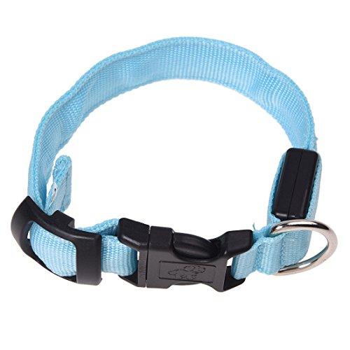 TOOGOO(R) LED Halsband Light - LED Leuchtschlauch Leuchthalsband Hundehalsband Hund Blau