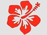 wandfabrik - Wandbild Wandsticker Hibiscus Blüten 3 Stück Hibiskus hellrot32