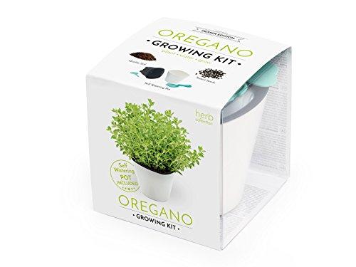 Cultive su propio orégano - este completo set contiene una hidrojardinera GreenSun de gran calidad con un sistema de autorriego, la cantidad exacta de sustrato fresco, semillas y las instrucciones de cultivo. El cultivo es muy rápido y sencillo. Este...