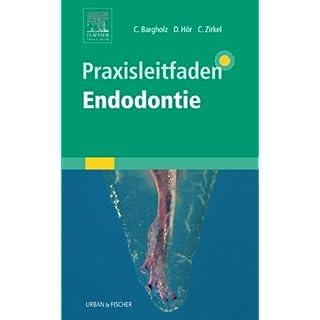 Praxisleitfaden Endodontie
