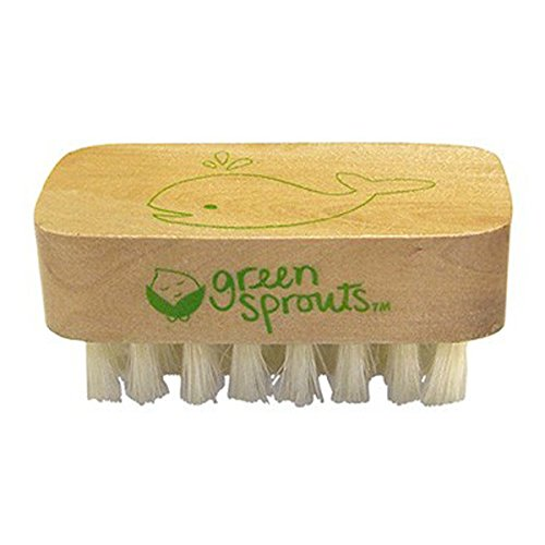 GREEN SPROUTS - Baby Nail Brush - 1 Brush
