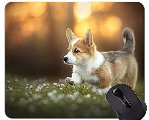 Mousemat-Mauspads, Haustier-Corgi-Hund - genähte Kanten