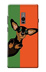 One Plus Two Cover, Premium Quality Designer Printed 3D Lightweight Slim Matte Finish Hard Case Back Cover for One Plus Two by Tamah