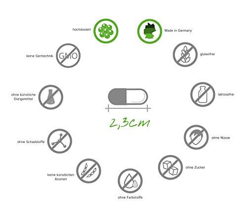 OPC Traubenkernextrakt Kapseln, zertifiziert, hochdosiert: 450mg reines OPC, 180 Kapseln für 6 Monate, Qualitätsprodukt-Made-in-Germany, Januar-Aktionspreis und 30 Tage kostenlose Rücknahme, 1er Pack (1 x 158,4 g) -