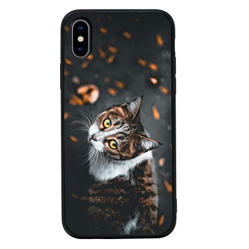I-CHOOSE LIMITED Katzen Temperiert Glas Zurück Fall Kompatibel mit iPhone X XS - Handyhülle Schutzhülle Stoßfänger für 5.8 Zoll Bildschirm