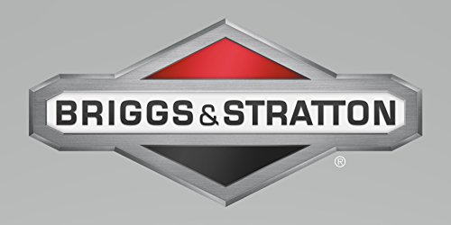 Briggs & Stratton Tool Kit Teil # 19300