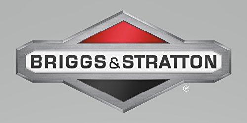 Briggs & Stratton ECM Zusatzartikel # 314295 GS -