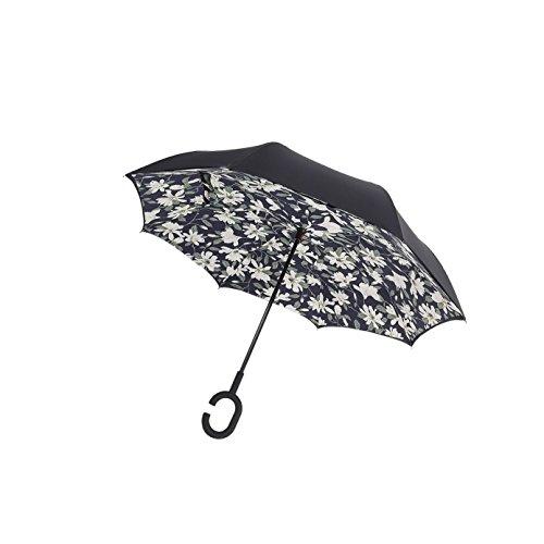 Top Schirm