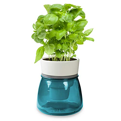 Kräutertopf mit Bewässerungssystem | LIVANA Home Selbstbewässernder Kräutertopf (Petrol)