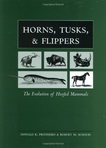 horns-tusks-and-flippers-the-evolution-of-hoofed-mammals