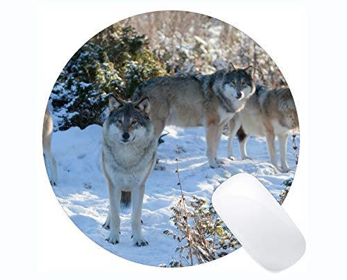Runde Gaming-Mauspad, Winterwolf Mauspads für Computer Laptop 230 x 230 mm