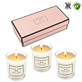 Lyeiaa Duftkerzen Set, Teelichter 3er Set Duftkerzen im Glas, Aroma Kerzen Scented Candles Nightlights für Weihnachten Geburtstag, Lavendel Rose Orange