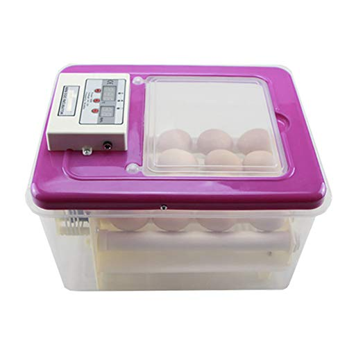 Zgrbq Rosa Incubatrice Automatica 16 Uova Usato per polli, Anatre, oche, Uccelli, Grilli, ECC,1
