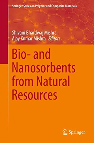 Bio- and Nanosorbents from Natural Resources (Springer Series on Polymer and Composite Materials)