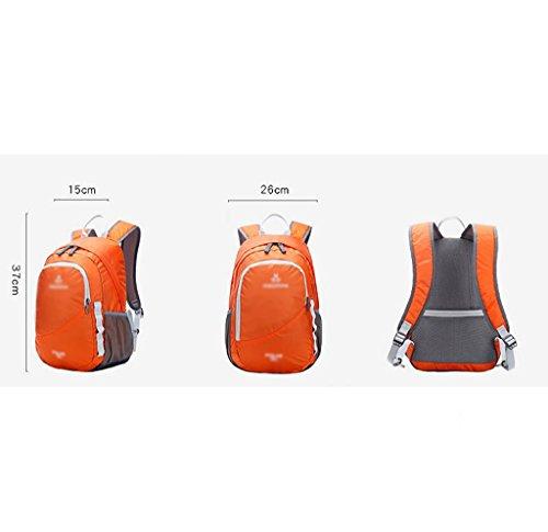 HWLXBB Borsa per alpinismo all'aperto Uomini e donne 15L Borsa alpinistica multifunzione impermeabile Escursioni alpinismo Zainetto per il tempo libero all'alpinismo zaino ( Colore : B ) A