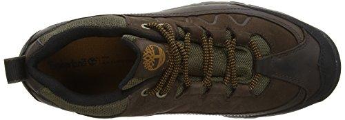 Timberland Thorton FTP_Bridgeton Low WP, Chaussures de Randonnée Homme Marron - Marron foncé