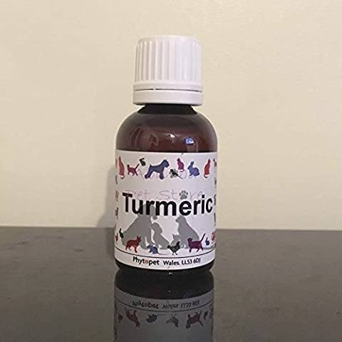 Dog Turmeric Root Anti-inflammatory Anti-microbial Liver Tonic Cell