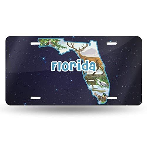 mchmcgm Florida State Map Anima Nummernschilder Front Plate 6