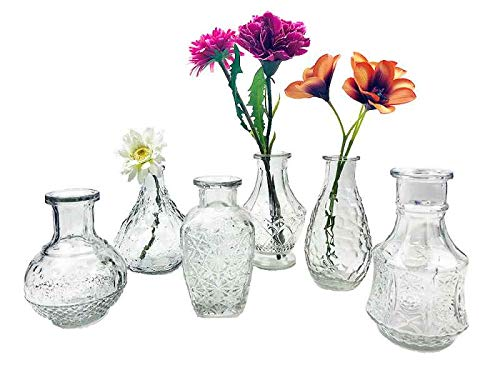 - Vasen (itsisa Glasvase Vintage, Klarglas Vase, H: 12 bis 14 cm, 6er Set - schöne, kleine Vase zur Tischdekoration)