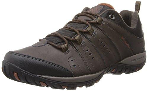 Columbia Woodburn II Waterproof, Zapatillas de Senderismo, Impermeable para Hombre, Marrón (Cordovan, Cinnamon), 43 EU
