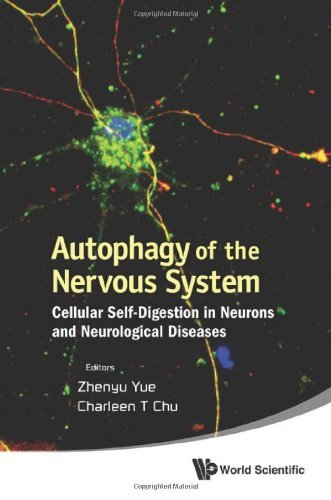 Autophagy of the Nervous System: Cellular Self-Digestion in Neurons and Neurological Diseases