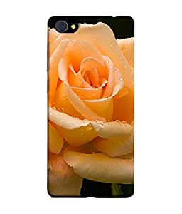 PrintVisa Designer Back Case Cover for Vivo X7 (Orange Beautiful Rose Design)