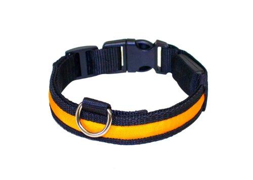 """Hunde Leuchthalsband LED Halsband Hundehalsband Hunde-Halsband """"Zandoo"""" Leuchthalsband inkl. Batterie für Hunde Katzen Haustiere in der Farbe orange Größe M (ca. 40-50 cm) NEU von der Marke PRECORN - 3"""